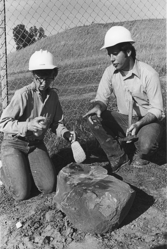 Fossil Discovery, 1977